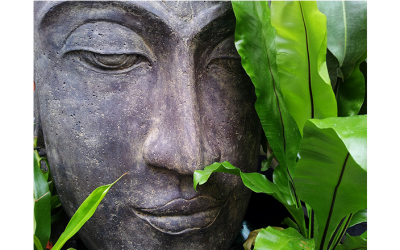 PAUSE: A Quick Meditation To Get Centered Now